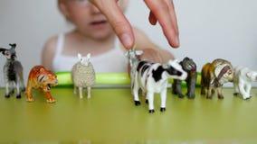 Los padres enseñan a un pequeño niño a distinguir entre animales, un juego del ` s del niño con los juguetes y padres, primer, ca metrajes