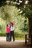 Los padres y la muchacha en verano cultivan un huerto en túnel de la planta fotos de archivo