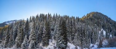 Los paisajes de la montaña Imagen de archivo