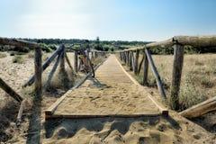 Los paisajes marinos toscanos, paraíso están después XIII Foto de archivo