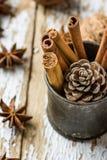 Los palillos de canela de los ingredientes de la hornada de la Navidad dispersaron a Anise Star Walnuts Pine Cone en jarro del vi Fotografía de archivo libre de regalías