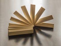Los palillos de madera son en abanico en hacer excursionismo Imágenes de archivo libres de regalías