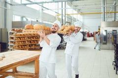 Los panaderos están celebrando una bandeja de pan en la panadería foto de archivo libre de regalías