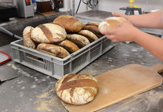 Los panaderos que hacen las barras de pan hechas a mano en una panadería de la familia que forma la pasta en tradional forman en  Imagenes de archivo