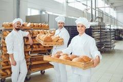 Los panaderos sostienen una bandeja con pan fresco en la panadería foto de archivo