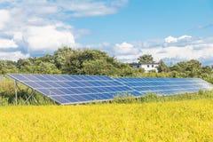 Los paneles de la energía solar, los módulos fotovoltaicos para la innovación ponen verde el en Foto de archivo libre de regalías