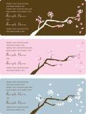 Los paneles de la invitación de la boda Imagenes de archivo