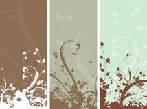 Los paneles florales del grunge Fotos de archivo libres de regalías