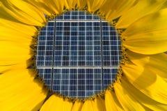 Los paneles solares dentro de un girasol Imagen de archivo libre de regalías