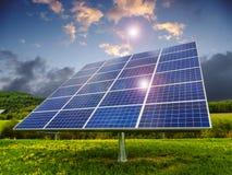 Los paneles solares en campo del diente de león Fotos de archivo libres de regalías