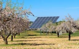 Los paneles solares en el campo de los árboles de almendra Fotos de archivo