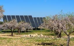 Los paneles solares en el campo II de la almendra Fotos de archivo