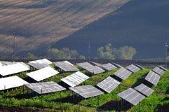 Los paneles solares en un campo Imágenes de archivo libres de regalías