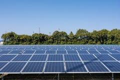 Los paneles solares y árboles foto de archivo libre de regalías