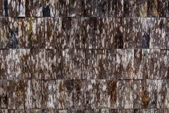 Los paneles viejos del fondo de madera de la textura fotos de archivo