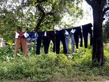 Los pantalones largos colgaron en una cuerda para tender la ropa por un árbol Fotos de archivo libres de regalías