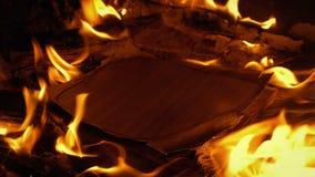 Los papeles del documento queman en el fuego - contenido genérico almacen de video