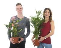 Los pares adornan a casa con las plantas Imagen de archivo libre de regalías