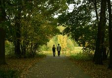 Los pares casados en bosque imagen de archivo libre de regalías