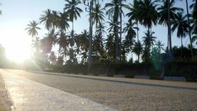 Los pares conducen la moto en el camino soleado tropical entre las palmeras Cámara lenta 1920x1080 metrajes