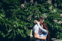 Los pares de abrazo sensuales en amor cerca del árbol floreciente verde en Budapest, Hungría El hombre hermoso está blando fotografía de archivo