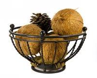 Los pares de cocos y un cono del pino en un metal toman el sol Imagenes de archivo