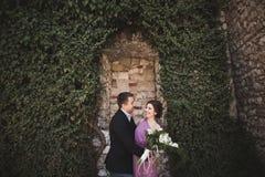 Los pares de lujo de la boda que abrazan y que se besan en las plantas magníficas del fondo, excavan cerca de castillo antiguo Foto de archivo libre de regalías