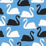 Los pares del cisne en fondo azul vector el modelo inconsútil, fondo, papel pintado Fotografía de archivo libre de regalías