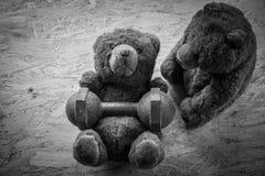 Los pares del oso de peluche ejercitan con pesas de gimnasia y la cinta Fotografía de archivo