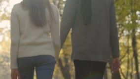 Los pares devotos en la relación que lleva a cabo las manos y el otoño que camina parquean juntos almacen de video