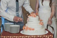 Los pares dividieron la torta para las huéspedes 4318 Imagenes de archivo
