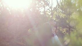 Los pares en el bosque novia y novio en el borde del bosque del pino en el día de boda metrajes