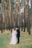 Los pares felices del recién casado tienen caminar romántico en el bosque joven del pino Foto de archivo libre de regalías