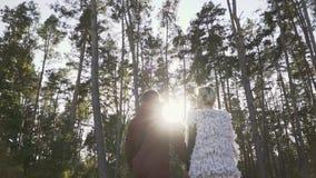 Los pares jovenes celebran las manos y caminar en un bosque del pino en el fondo de la sol El par pasa el tiempo libre almacen de video