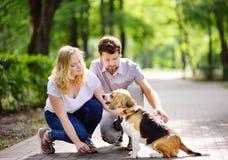 Los pares jovenes con el perro del beagle en el verano parquean fotos de archivo
