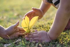 Los pares jovenes que llevan a cabo las manos ayudan al árbol de la planta fotos de archivo libres de regalías