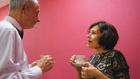 Los pares mayores beben la conversación agradable del té almacen de video