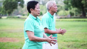 Los pares mayores mayores asiáticos practican Taichi, ejercicio del gongo de Qi al aire libre en el parque Amor y naturaleza abst almacen de video
