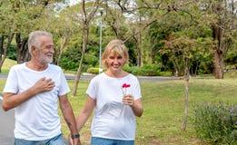 Los pares mayores tienen una flor como regalo para el día de los valentine's imagen de archivo libre de regalías