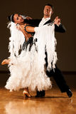 Los pares profesionales de la danza de salón de baile preforman una danza de la exposición Fotos de archivo