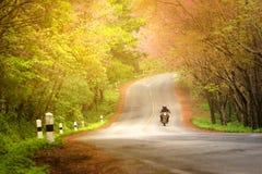 Los pares románticos del bigbike de la escena de la primavera del otoño del camino aman el viewl de Beautifu del turista del viaj Imagenes de archivo