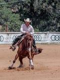 Los participantes en competencias ecuestres se realizan en una granja del caballo Imagen de archivo