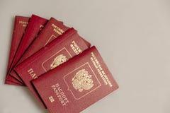 Los pasaportes extranjeros rusos avivan en fondo gris foto de archivo libre de regalías
