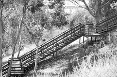 Los pasos Imagen de archivo libre de regalías