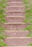 Los pasos cortaron en lado de la colina Fotografía de archivo