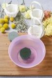 Los pasos de hacer decoraciones florales con la primavera temprana florecen: hy Fotos de archivo