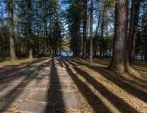 Los pasos de piedra que se van para el agua en el otoño parquean Fotografía de archivo