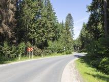 Los pasos del camino a través del bosque Imagen de archivo libre de regalías