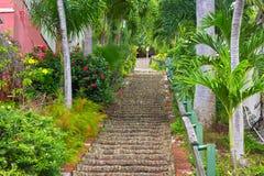 Los 99 pasos en Charlotte Amalie, St Thomas, los E.E.U.U. VI Foto de archivo libre de regalías