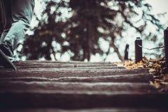 Los pasos en el parque nacional Sofiivka, Uman, Ucrania Bosque otoñal imagen de archivo